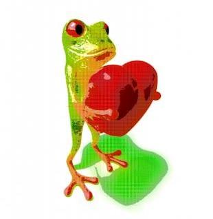 Frog, wildlife