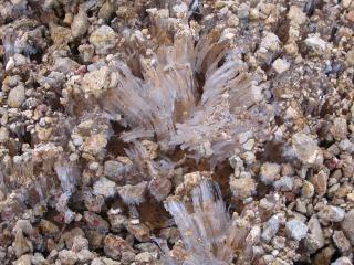 Frozen ground  frozen