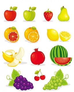 fruit pictures    vector material