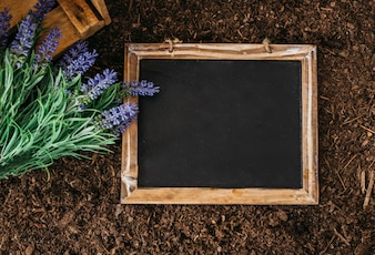 Gardening concept with slate on soil