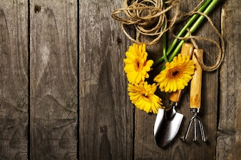 Gardening tools with yellow flowers