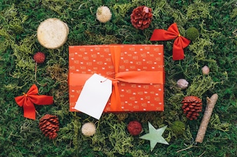 Gift box on green grass