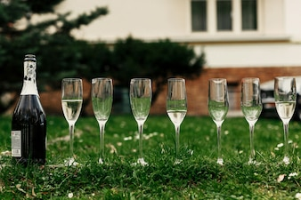Glasses of champagne on the lawn
