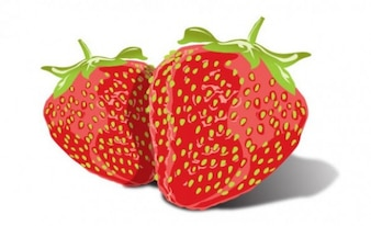 Glossy two strawberry illustration vectors set