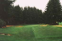 Golf course in the forest