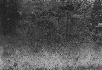 Grainy gradient background