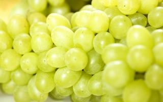 grapes , healthy