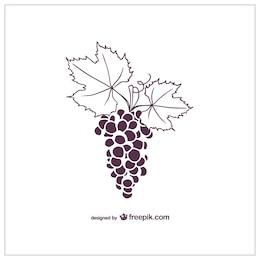 Grapes vector graphics