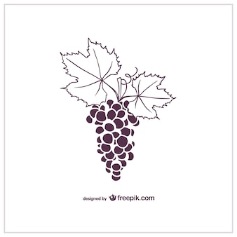 Grapes vector graphics