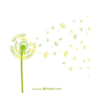 Green and yellow dandelion vector