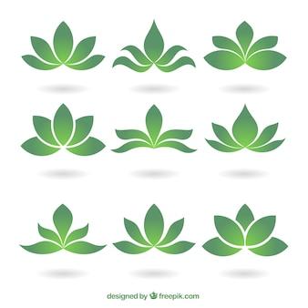 Green floral logos