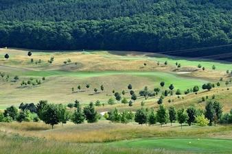 グリーンゴルフコース