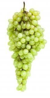 Green Grapes, fruit