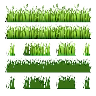 Green grass pack
