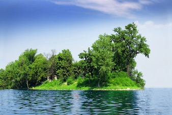 Green island with trees