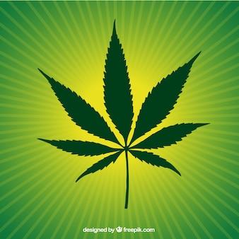 Green marijuana leaf