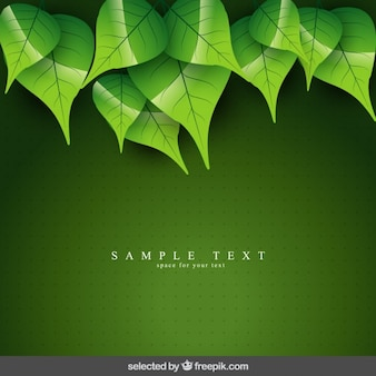 Green natural background with leaves