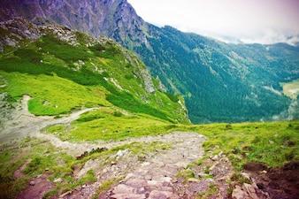 Green valley between mountains