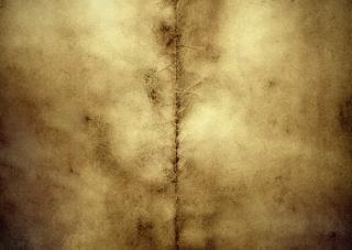 Grunge background  burned  page