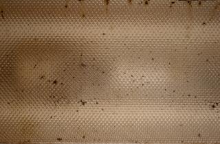 Grunge Plastic Texture, textured