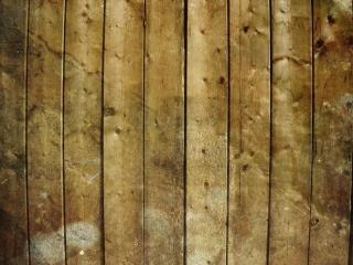 grungy wood texture  board