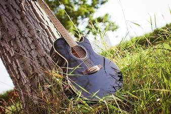 自然の中でギター