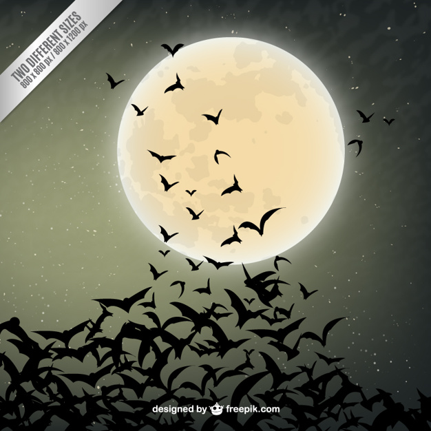 Halloween background with bats silhouettes
