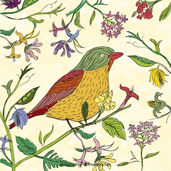 Hand drawn bird in spring time