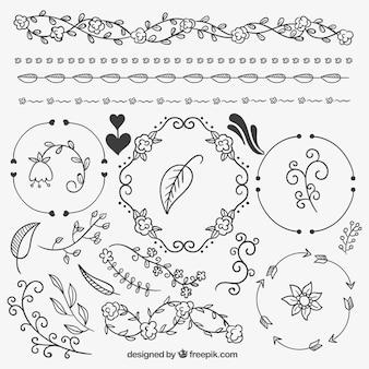 Hand drawn natural ornaments