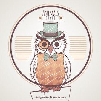 Hand drawn owl with style