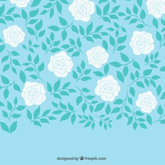 Hand drawn white roses background