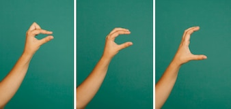 Hand gesture small