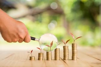 預金コインで育つプラントステップ貨幣で虫眼鏡を保持する手。銀行と投資のビジネスコンセプト。