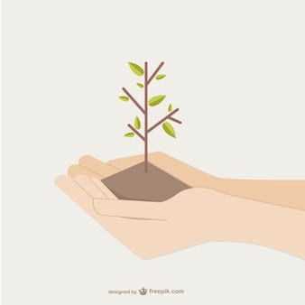 Hands holding growing tree