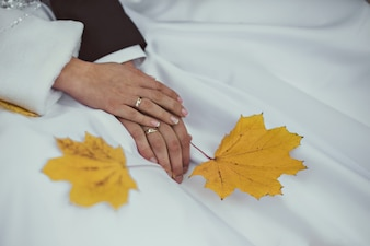 Hands together of newlyweds