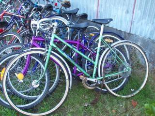癒し自転車 - 緑の女性