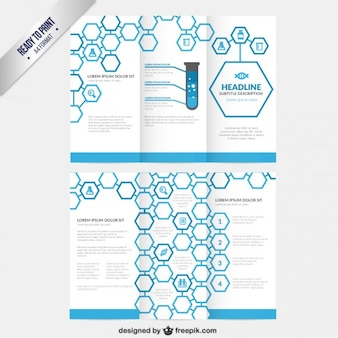Hexagons trifold template
