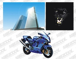 High-rises, Panthers and motorcycles vector material