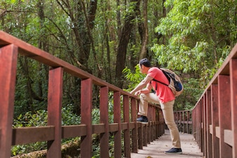 Hiker on an old bridge in the jungle