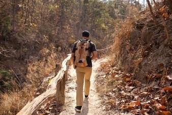 Hiker on pathway