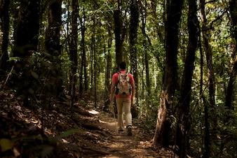Hiker walking through dark forest