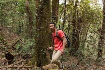 森林を歩くハイカー