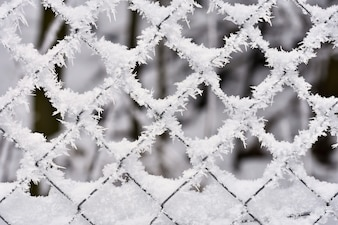 Icy fence. Beautiful winter seasonal abstract background.
