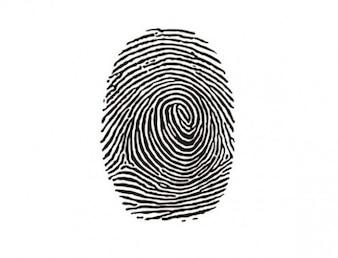 Identity fingerprint ink mark