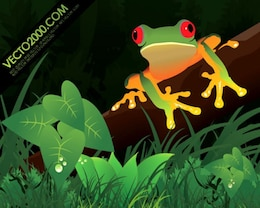 Illustration frog in a jungle