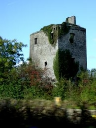 Ireland - Bunratty Castle, ivycovered