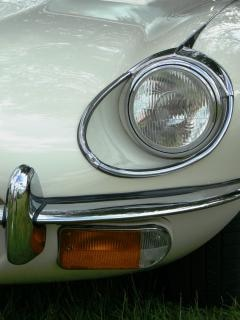 Jaguars Eye