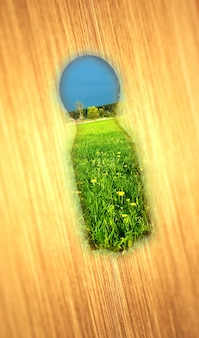 Keyhole with a green field