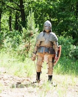 騎士の騎士