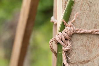 Knotted Rope On Wood